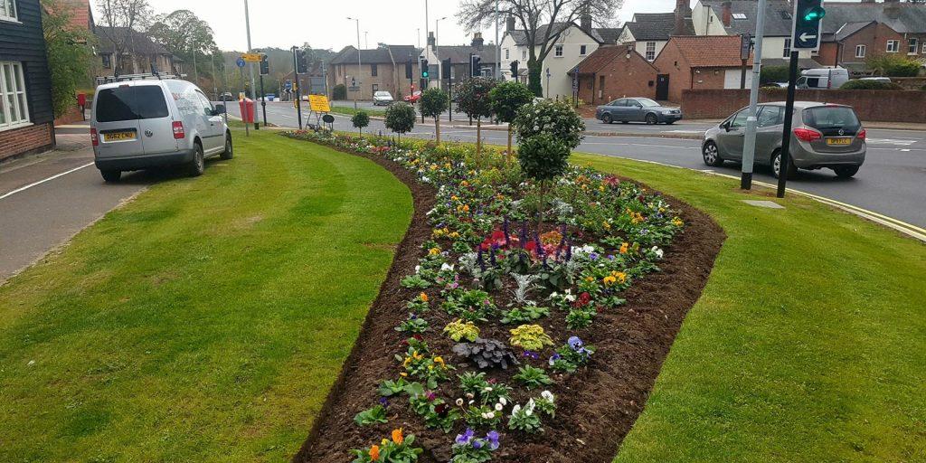 Commercial Garden Maintenance of In Bloom roadside planting in Bury St Edmunds