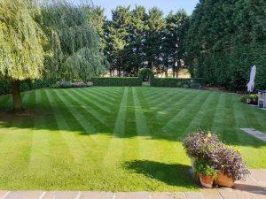 Lawn cutting with lawn stripes