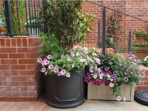 private gardening services with containers planted