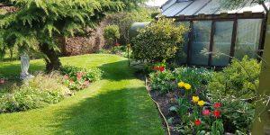 garden maintenance by CCG Gardeners in Bury St Edmunds