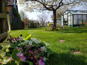 Spring garden maintenance service by CCG Gardeners in Bury St Edmunds, Suffolk