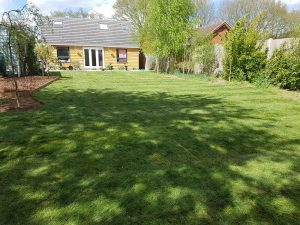 Newly laid lawn turfs in garden in Snape, by CCG Gardeners