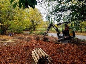 Old garden hedge removed by CCG Gardeners in Felsham, Suffolk