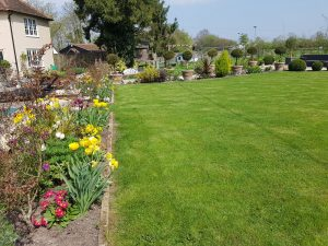 Garden design and maintenance - near Bury St Edmunds