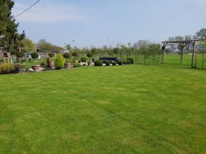 Garden design and gardening - near Bury St Edmunds