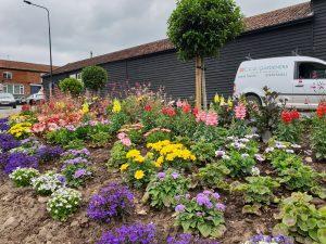 Commercial garden design on teh smiley bed, Bury St Edmunds