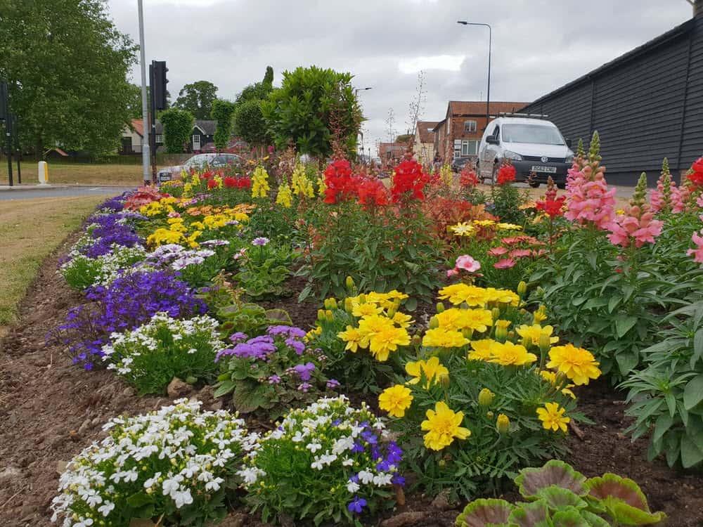 Commercial garden planting and maintenance, Bury St Edmunds