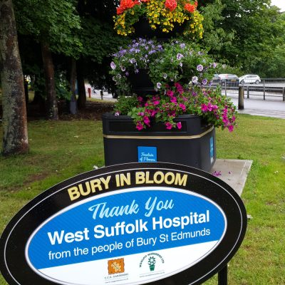 Bury In Bloom Container replanted