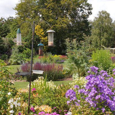 Garden maintenance in Suffolk