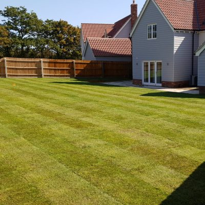 Lawn turfs laid for new house