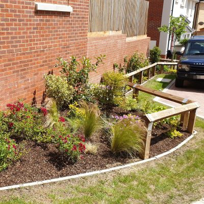 Newly planted garden bed, Bury St Edmunds