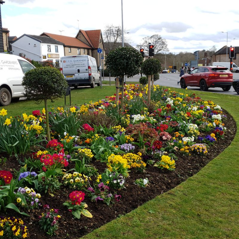 Smiley commercial plantings by CCG Gardeners