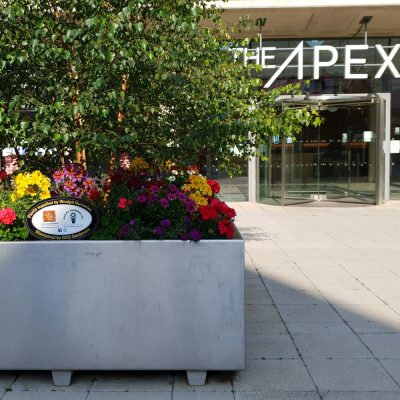 Town center commercial plantings at The Apex by CCG Gardeners