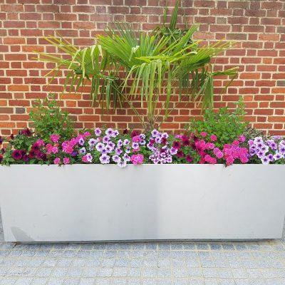 commercial planter The Arc Bury St Edmunds
